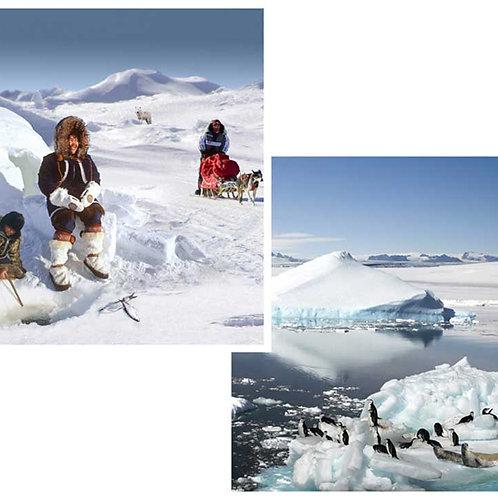 Polar Backdrops - small