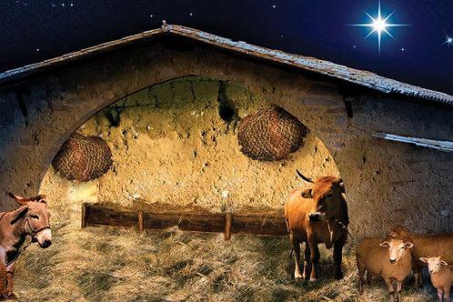 Nativity Stable backdrop 2