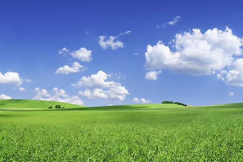 Rolling Fields Bespoke Backdrop