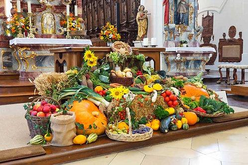 Harvest Festival 3 Bespoke Backdrop