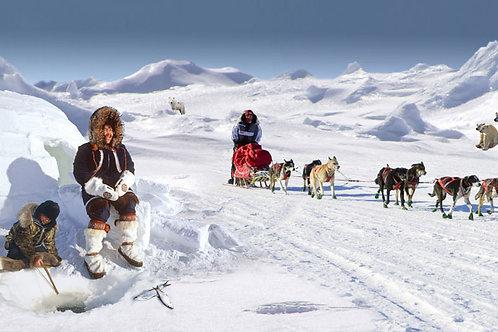 Arctic Scene Bespoke Backdrop