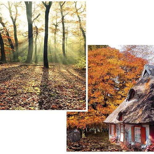 Woodland Backdrops - small