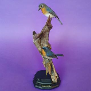 blue-flycatchers.jpg