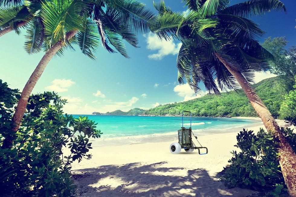 Beach Cart on beach