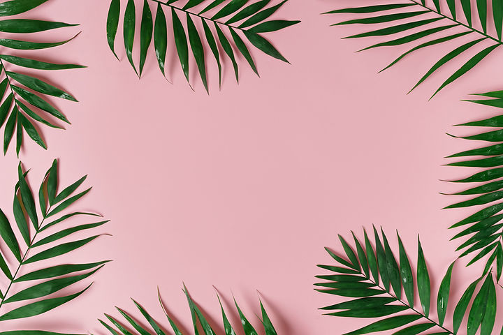 Pink Background with leaves