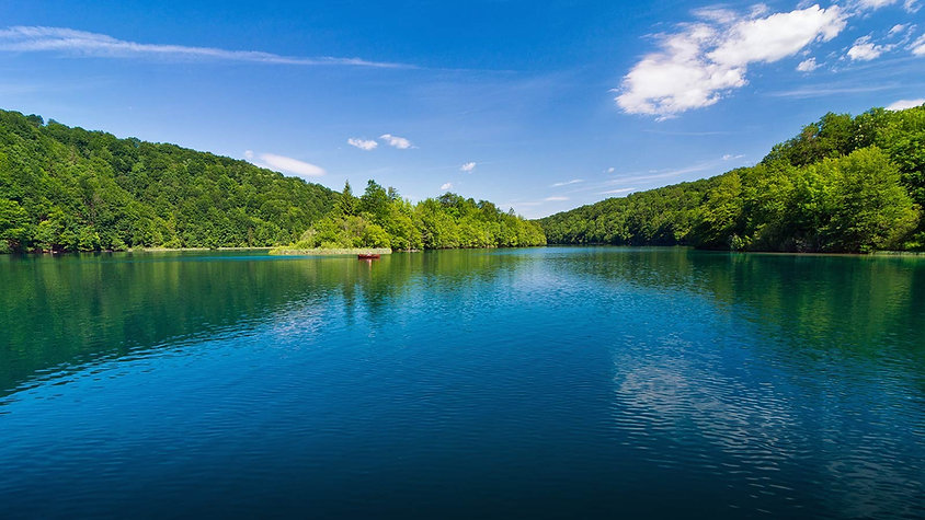 Lake with tress around it