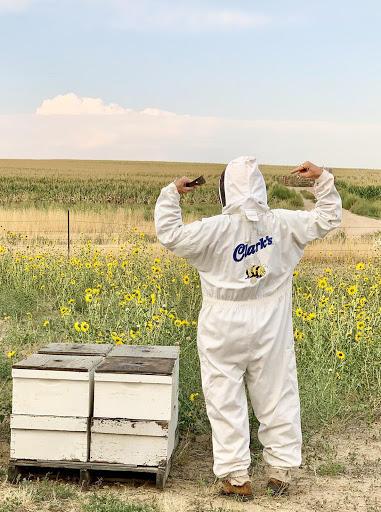 Clark in Beekeeper equipment
