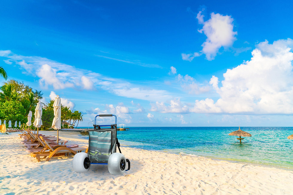 Beach cart near ocean water