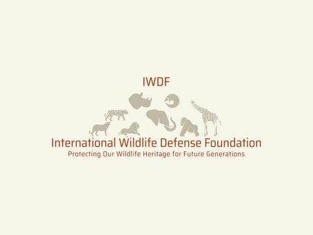 International Wildlife Defense Foundation Launches Website