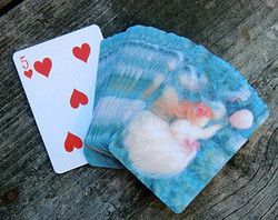 Playing Cards with a Girl in Pursuit