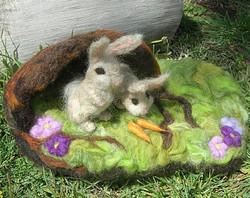 Bunnies and Their Warren Homejpg