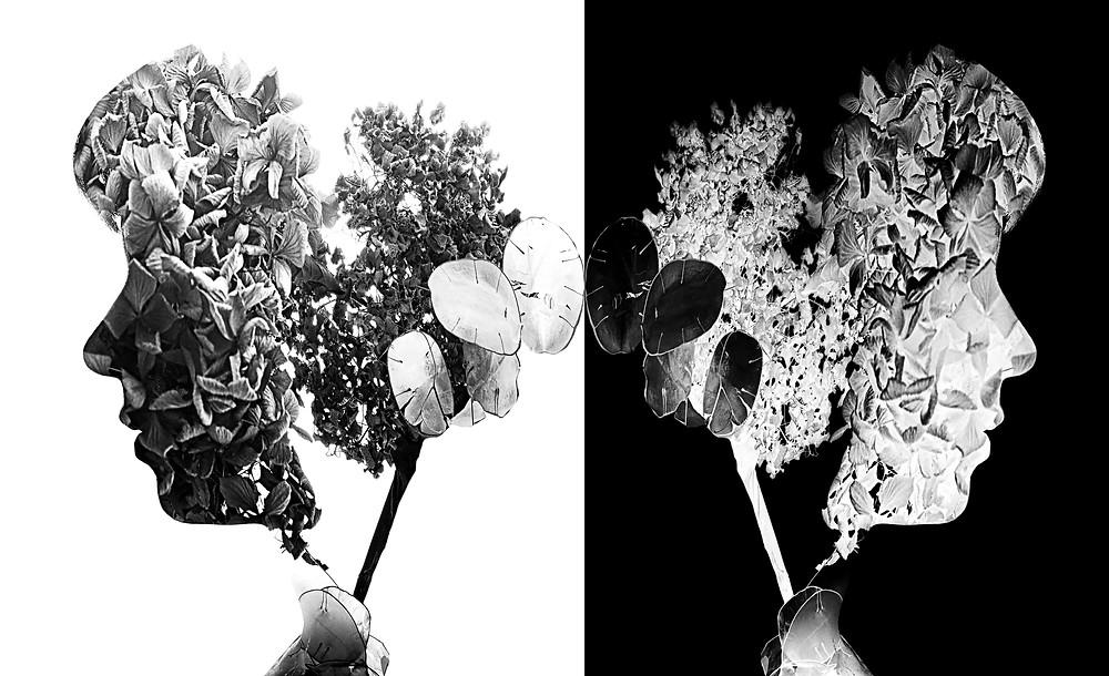 double exposure portrait ritratto in doppia esposizione e in negativo di testa di ragazza e fiori in bianco e nero
