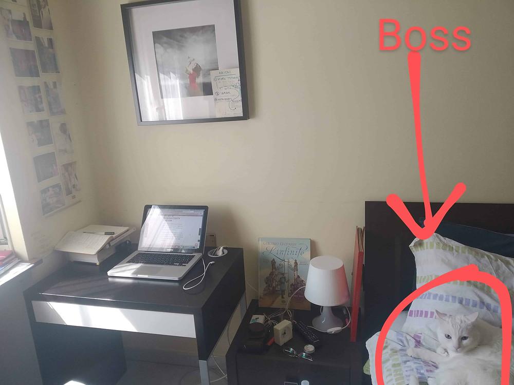 postazione di lavoro per piccolo home office