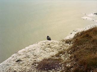 By-the-sea-still-life-photo-akua-allen2.