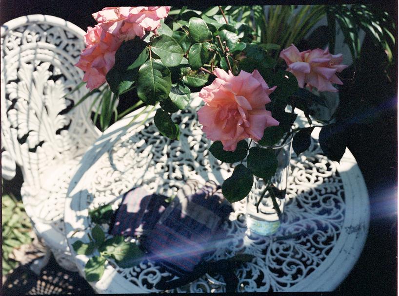 Roses Ektar 100.tif