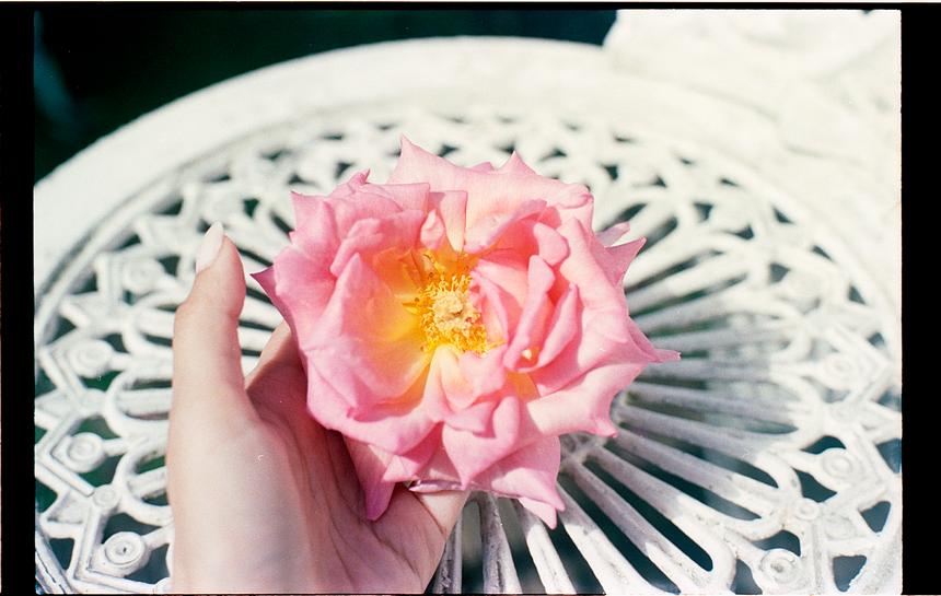 roses_test_35mm (3).tif