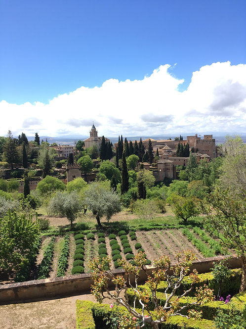 Private tour to the Alhambra