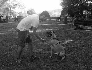 perro dando pata adiestramiento biotxakur sopelana