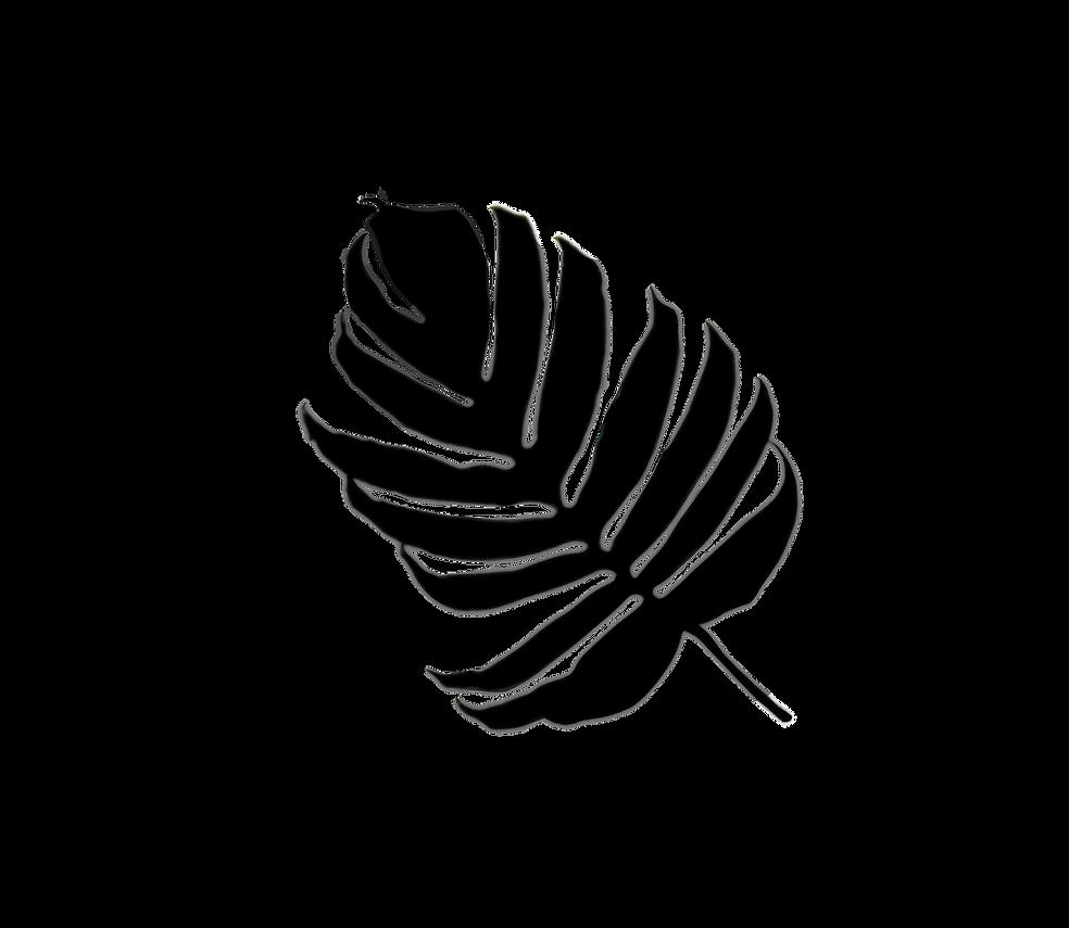 palm tropicale12semi transparent19.png