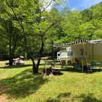 andy-s-trout-farm-and-cabins-andy-s-camp