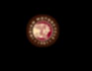 WEB_RGB_Indian Logo_Icon_headdress copy_