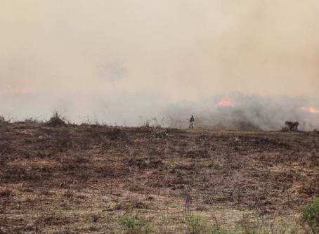 """Anticipan una primavera seca: """"La naturaleza no va a ayudar a apagar los incendios"""""""