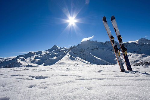 Ski's  Professional