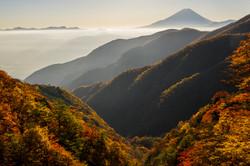 紅葉と富士山(丸山林道より)
