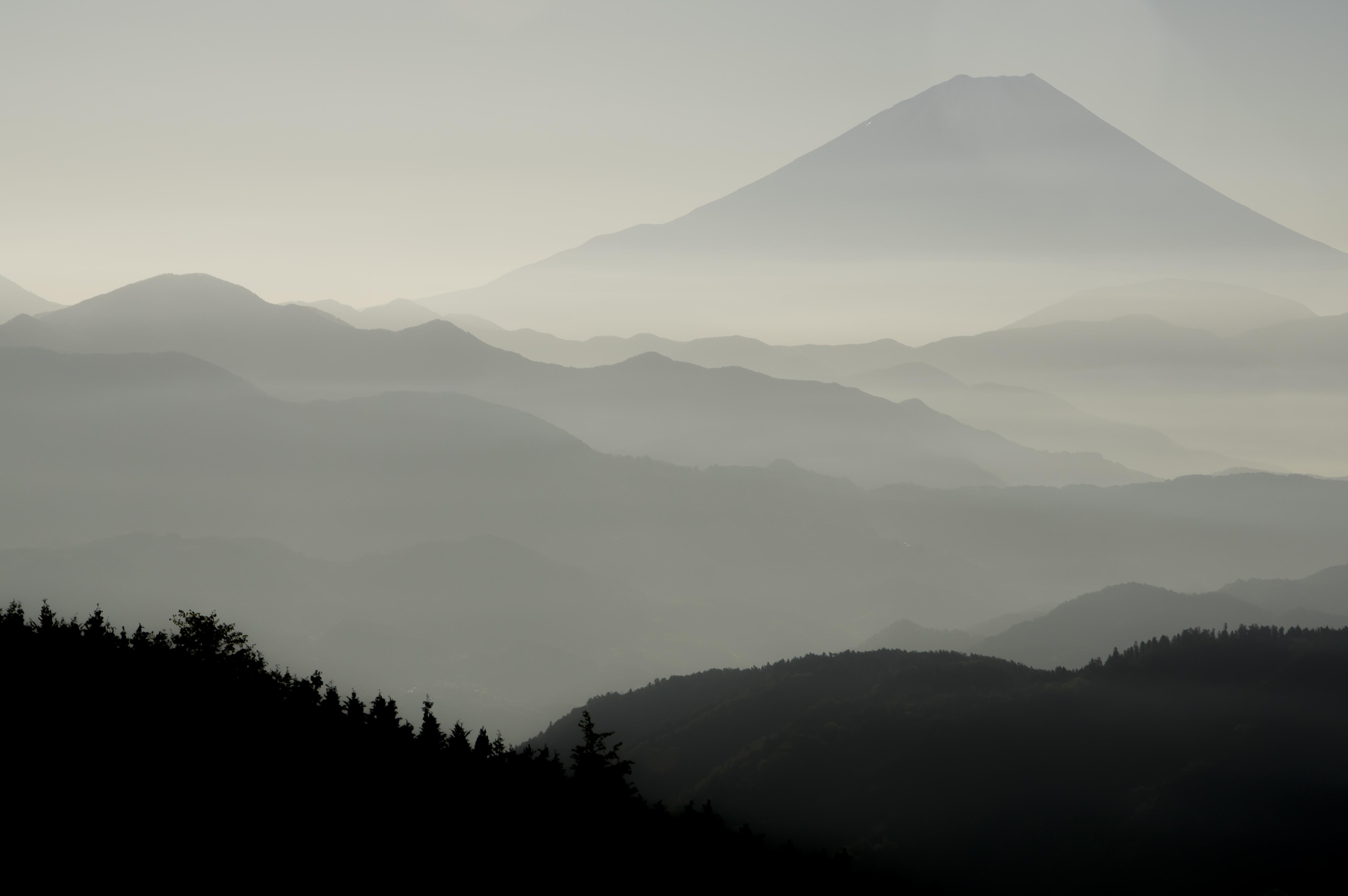 平林からの富士