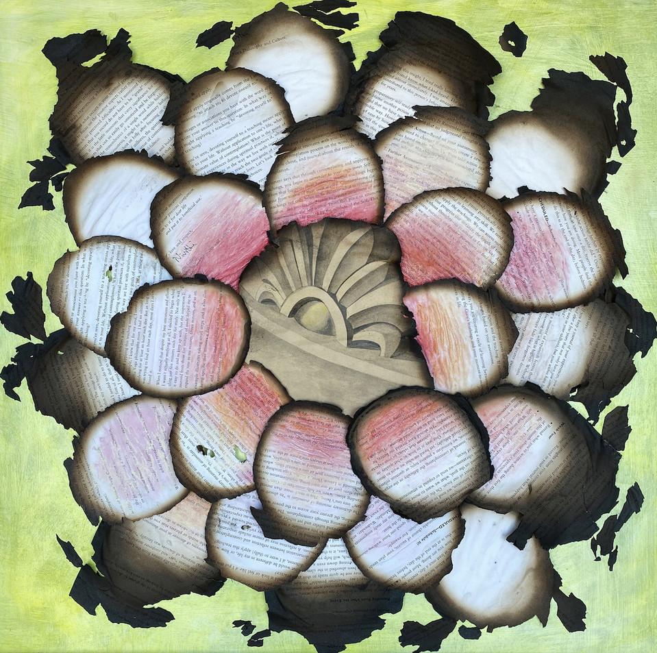 Burnt lotus crop copy.jpg