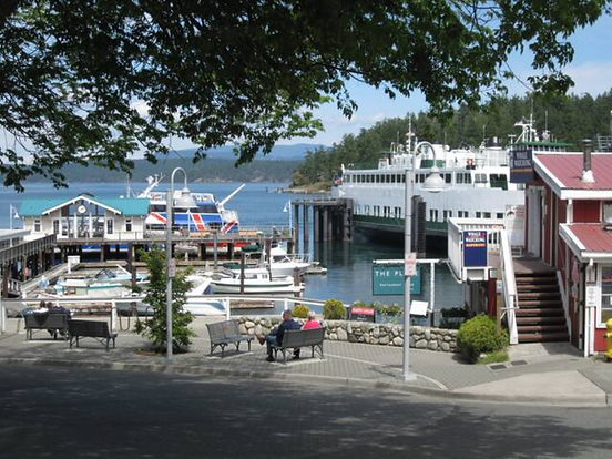 Downtown Friday Harbor- Donny Galt Picture