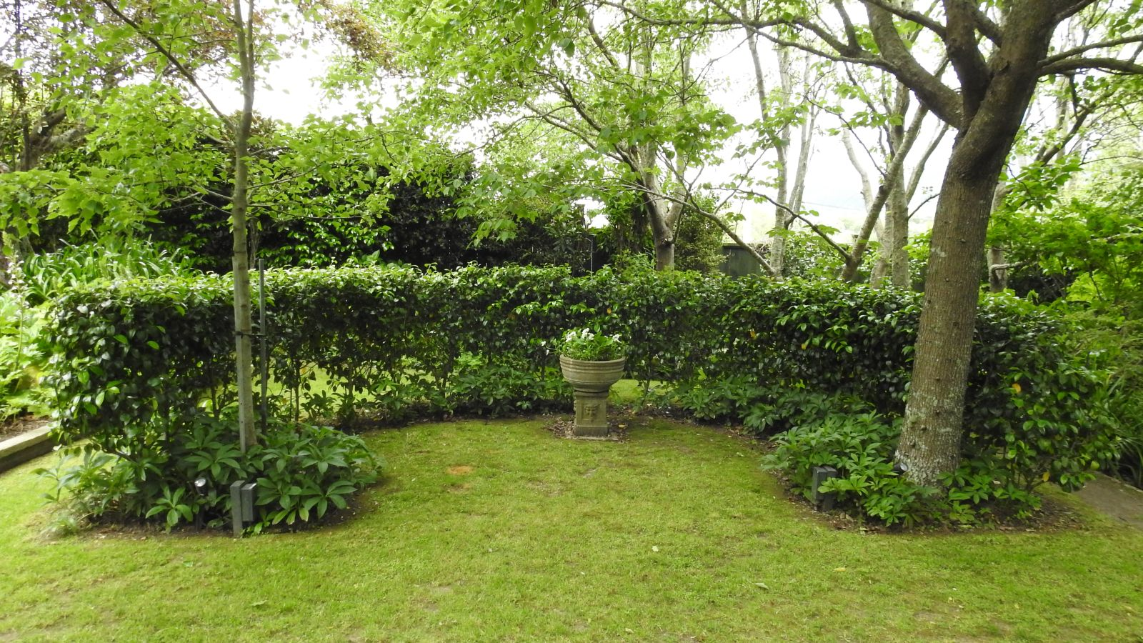 Parsonage Garden 17 November 2018 32