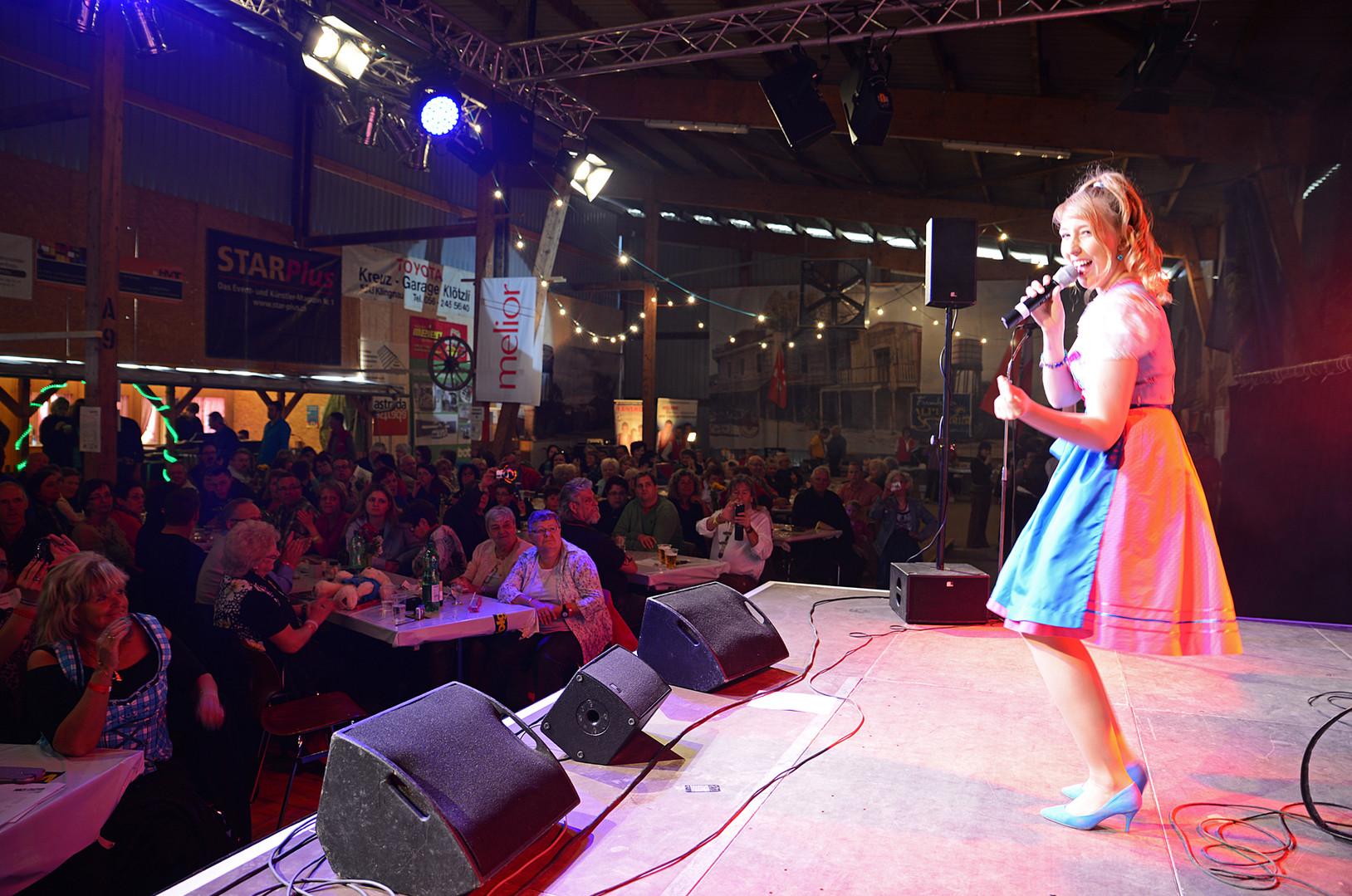 2013 Halt-Festival.JPG