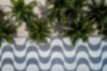 Copacabana APA Rio.jpg