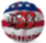 Blaze US Ball_edited.png