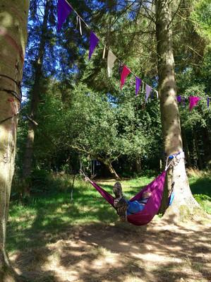 Hammocks in the woodland