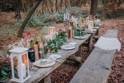 Feasting in the forest