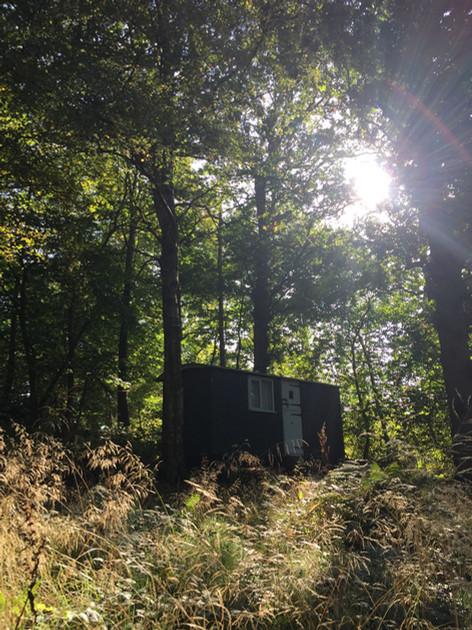 Shepherds hut in the long grass