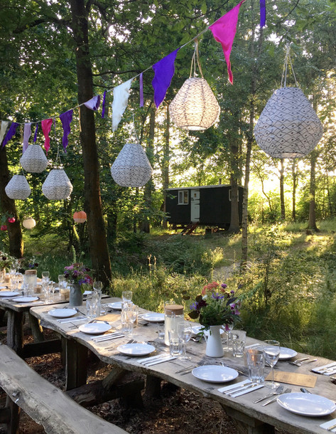 Dinner party in the woods!