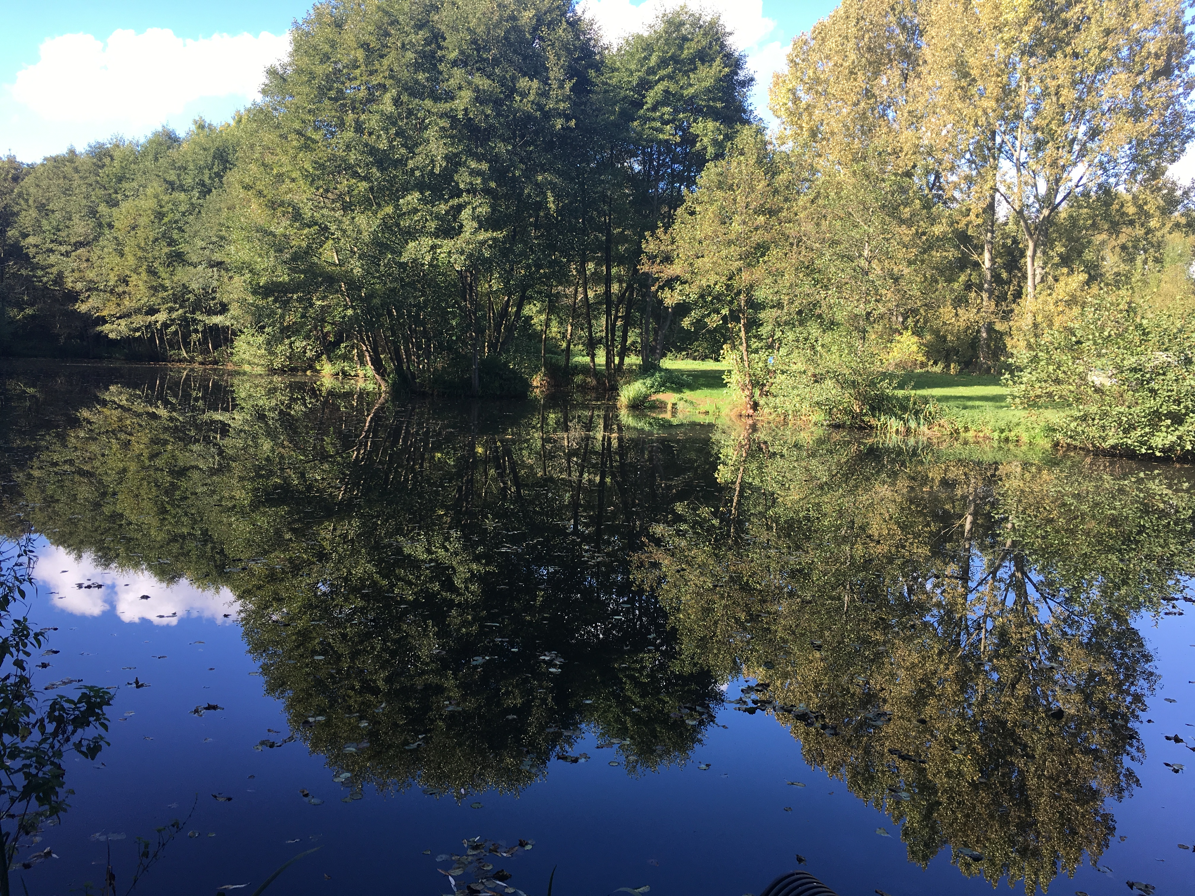 Tillingbourne trout farm
