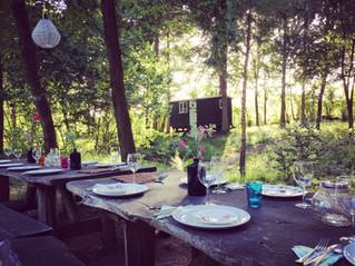Dining beneath the trees