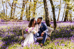 A magical bluebell backdrop