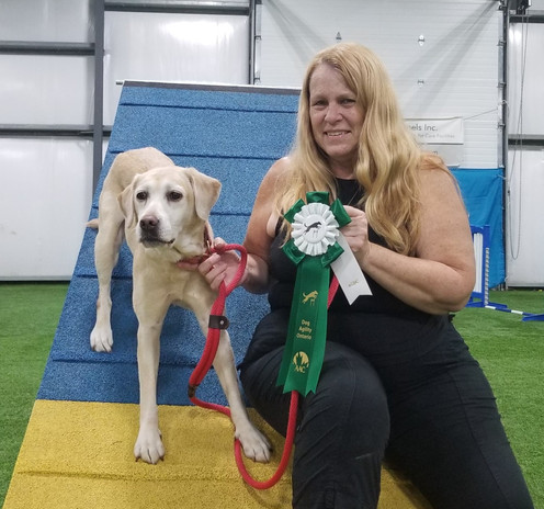 Gali with her Advanced Games Dog of Canada (AGDC) title!