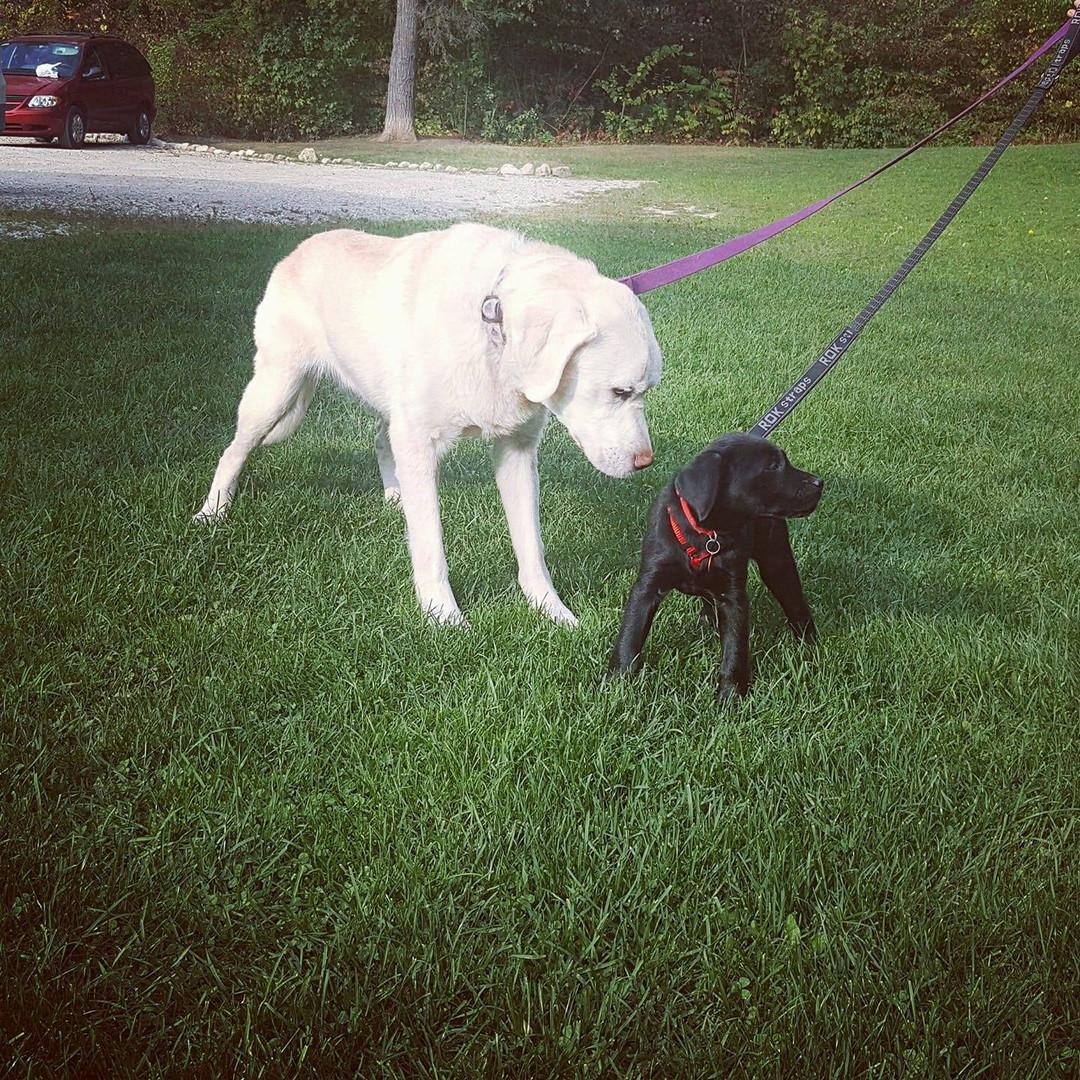 Piper and baby Xe'Nedra