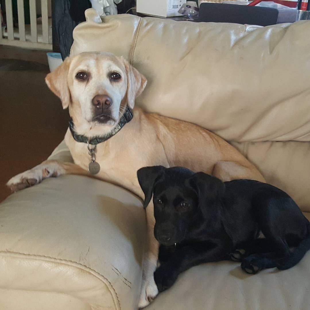 Gali and Baby Xe'Nedra