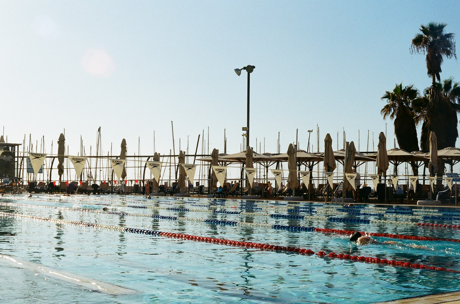 Swim to the future