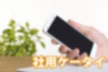phone_bkup.jpg