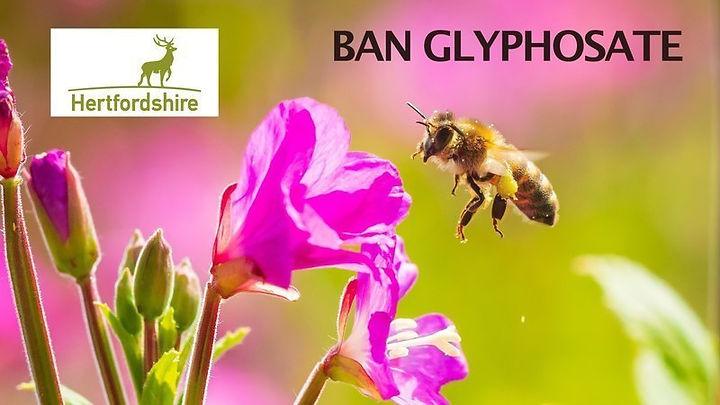 BanGlycophosphates.jpg