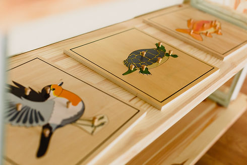 Montessori wood material for the animal