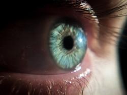 Macro photography: human eye